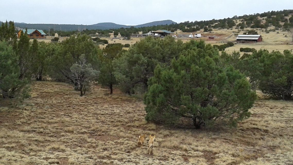 028H ACR 3555 (2 Acres) Parcel 5 -- Lot 028H TBD, Vernon, AZ 85940