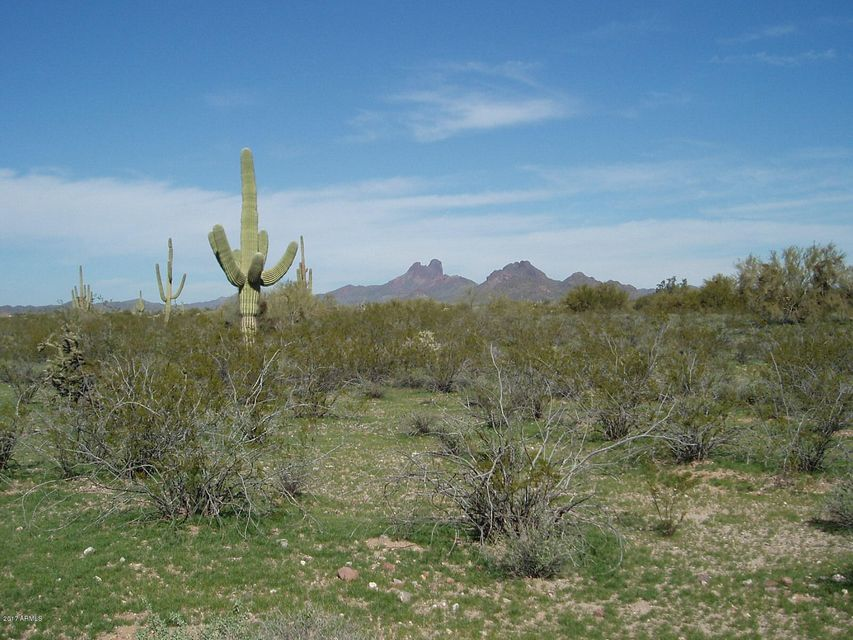 33102 W Carefree Highway Lot 225, Unincorporated County, AZ 85390