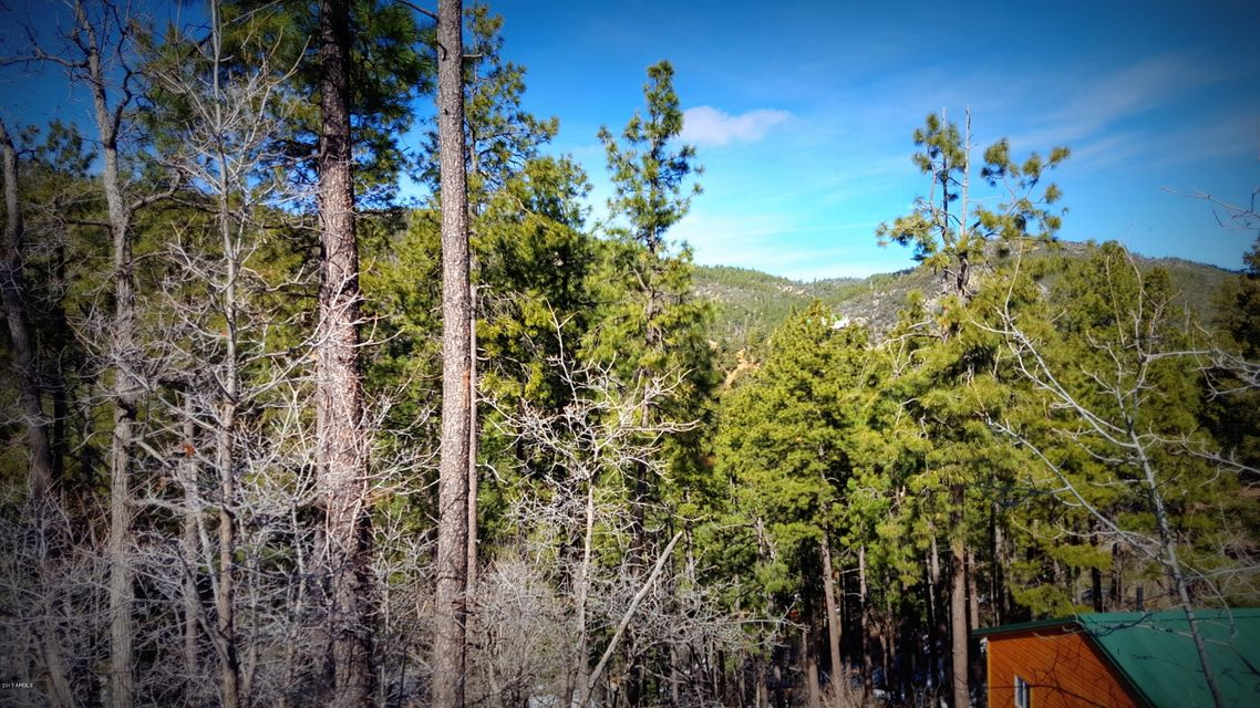 0 BREEZY PINE Road Mayer, AZ 86333 - MLS #: 5559097