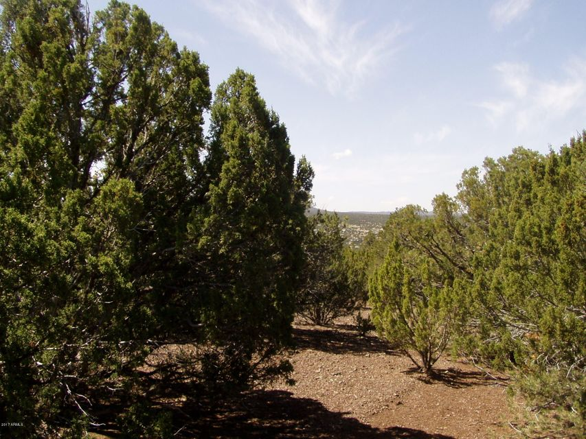 Lot 32 Ricks Road Lot 32, Vernon, AZ 85940