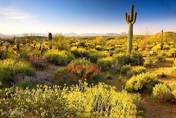 68 BULL WHIP Road Lot 68, Congress, AZ 85332