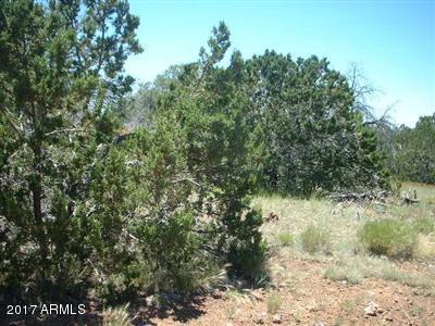 Lot 43 Greenview  Ranches -- Lot 43, Seligman, AZ 86337
