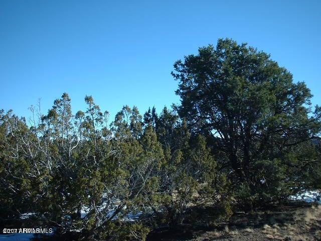 Lot 770 N Pickett Corral Road Lot 770, Seligman, AZ 86337
