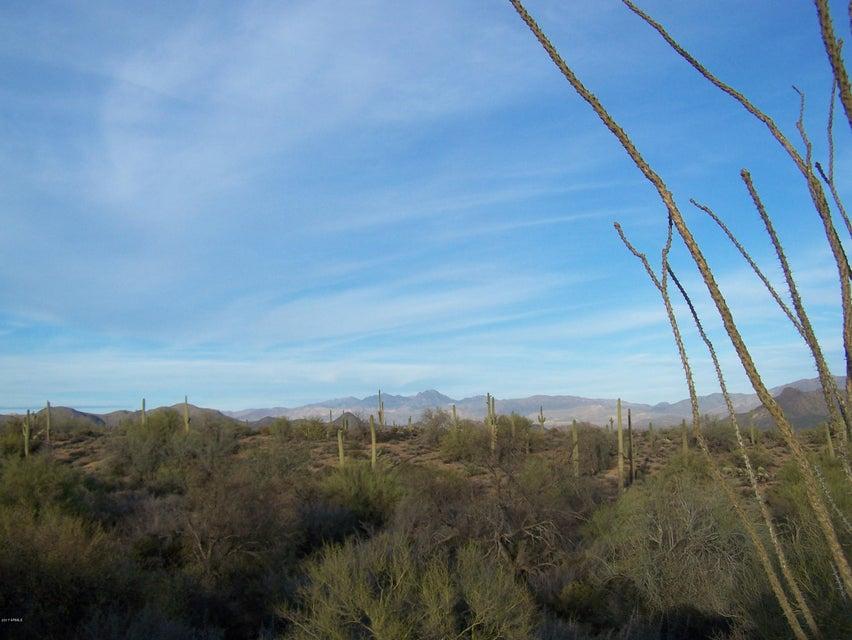 174XX E Dixileta Drive, Rio Verde, AZ 85263