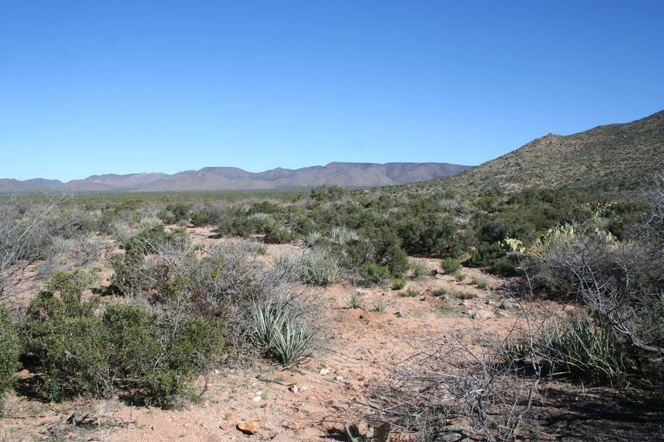 Lot 4 Silver Springs Road Lot 4, Kingman, AZ 86401