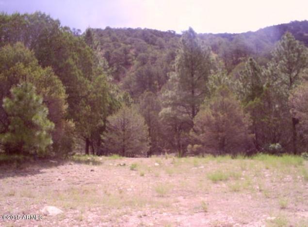 Lot 005 Meadowview --, Seligman, AZ 86337