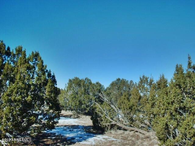 29605 W ROCK RIDGE Road, Seligman, AZ 86337