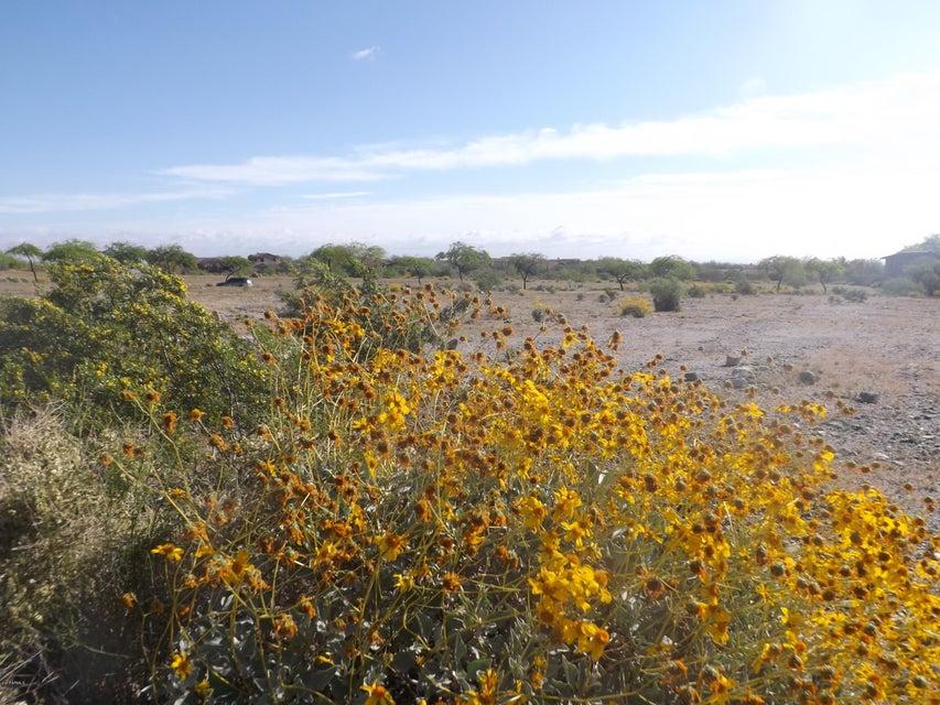 21551 W BUCKHORN Bend Buckeye, AZ 85396 - MLS #: 5579510