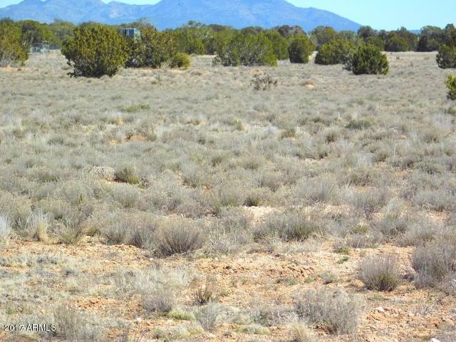 27885 Fort Rock Road Lot 320, Seligman, AZ 86337