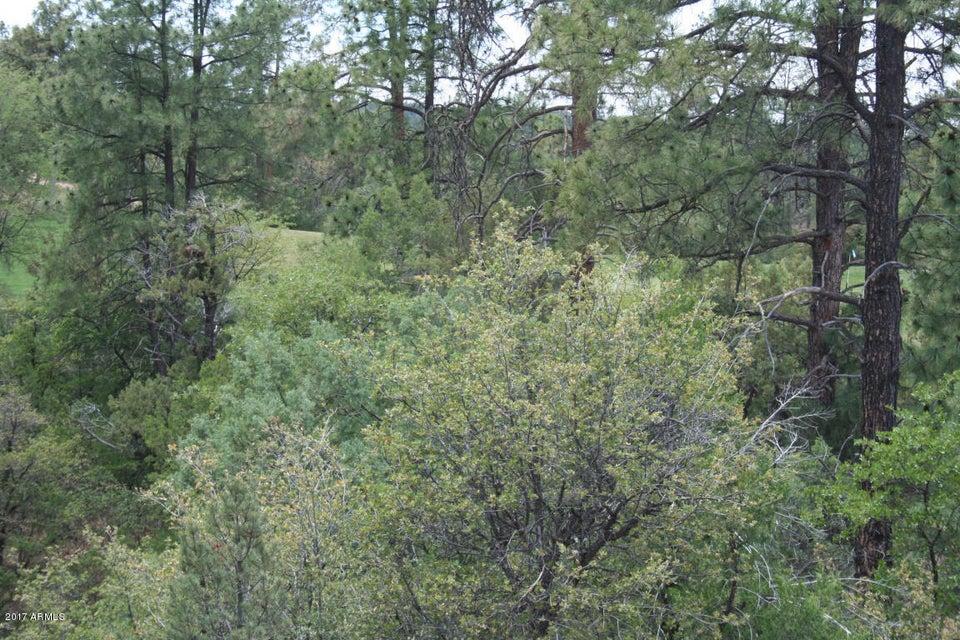 3001 E Purple Sage Drive Lot 268, Payson, AZ 85541