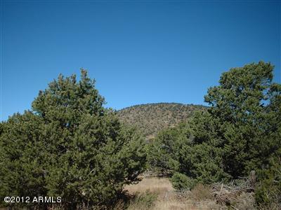 1343 E Sagebrush Road Lot 3, Williams, AZ 86046