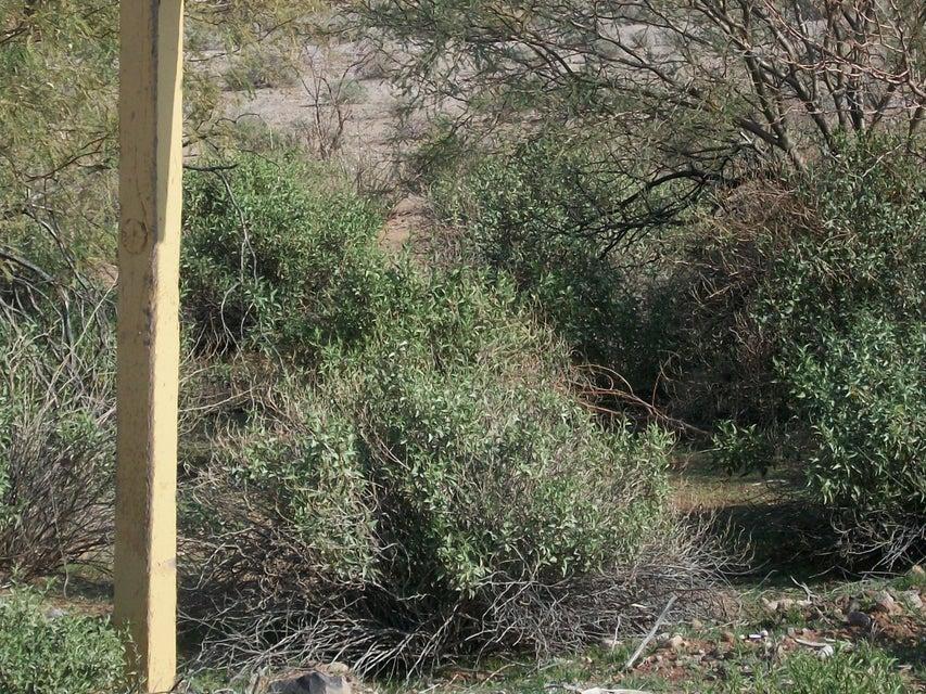 ADOBE RANCH -- Lot 2, Gila Bend, AZ 85337