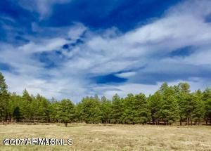 4607 N BRACKIN RANCH Road E Lot 16, Flagstaff, AZ 86001