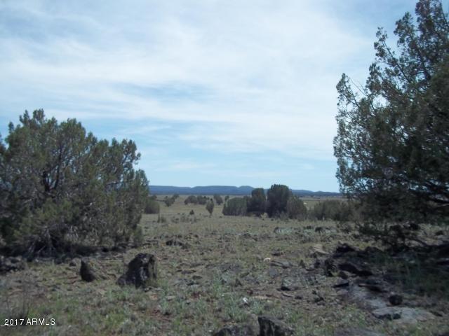 Lot 104 Juniperwood Ranch -- Lot 104, Ash Fork, AZ 86320