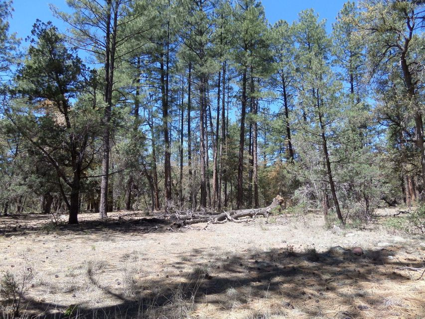 200 S Fred's Road Lot 31, Young, AZ 85554