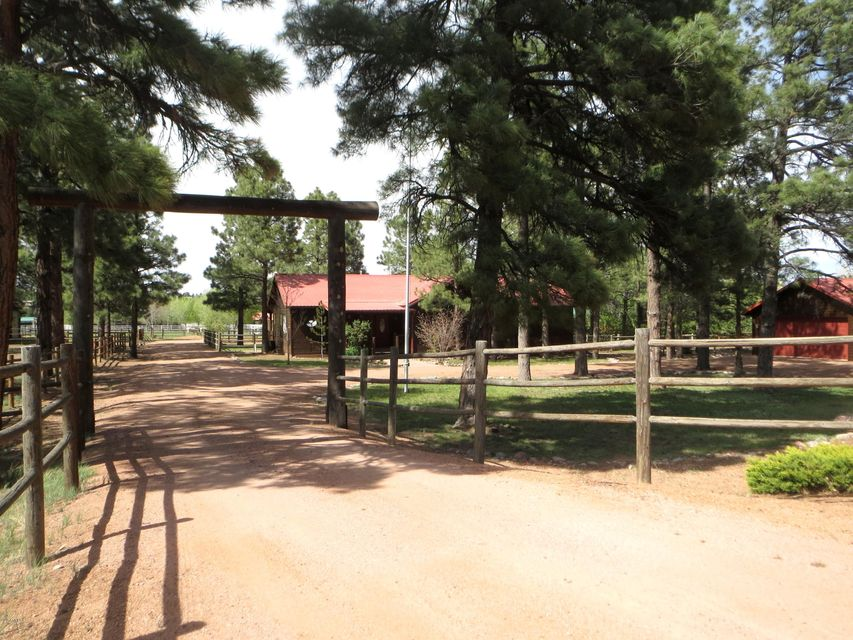 2312 BISON RANCH Trail, Overgaard, AZ 85933