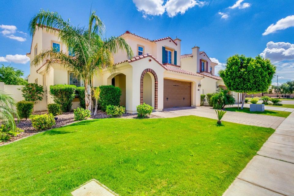 2352 W DESERT BROOM Place, Chandler, AZ 85248