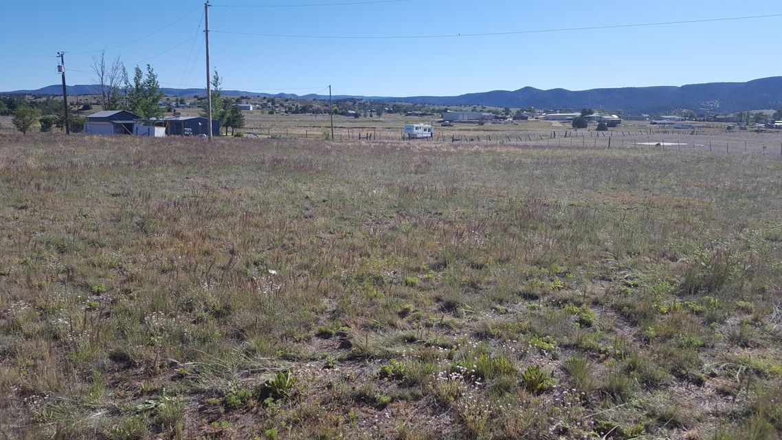 47223 N 288 Highway Young, AZ 85554 - MLS #: 5608250