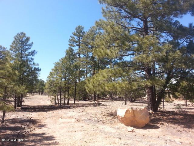 1450 LOW MOUNTAIN Trail Lot 120, Heber, AZ 85928