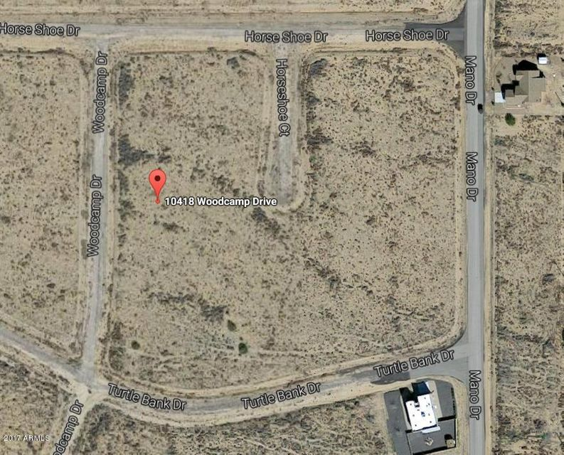 10418 N WOOD CAMP Drive, Kingman, AZ 86401