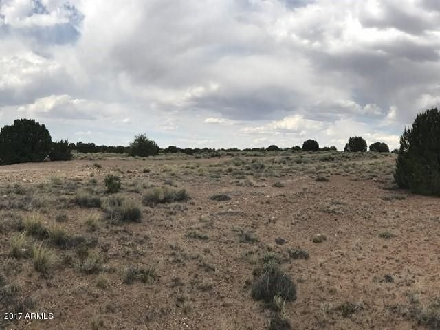 Lot 1 Highway 180 Highway Lot 1, Concho, AZ 85924