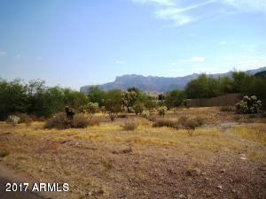 6000 S KINGS RANCH Road Lot 105, Gold Canyon, AZ 85118