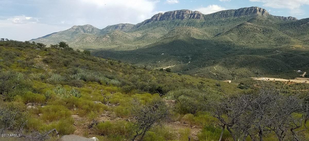 N Mountain Lion Pass --, Globe, AZ 85501