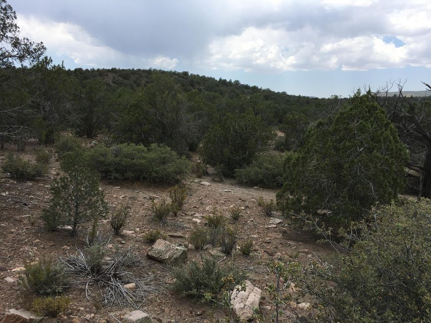 Lot  229 Badger Ridge -- Lot 229, Kingman, AZ 86401