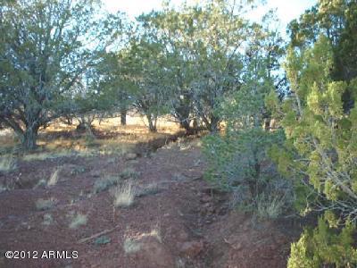Lot 19 ASCENSION Drive Williams, AZ 86046 - MLS #: 5625841