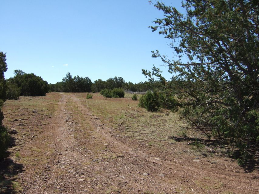 8413 N Apache County Road Lot 2, Vernon, AZ 85940
