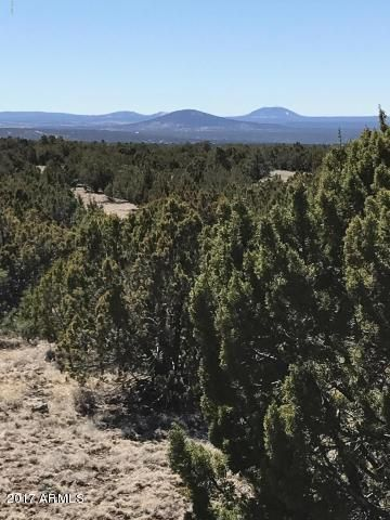 Lot 20 Idlewild Ranch Lot 0, Concho, AZ 85924