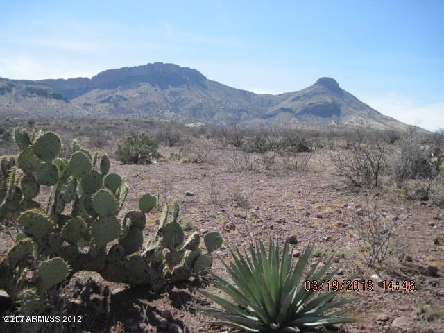 Lot 141 Silver Creek Road Lot 141, Douglas, AZ 85067