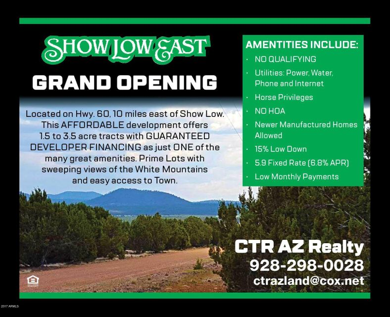 28 CR 3026 Road Lot 46, Vernon, AZ 85940