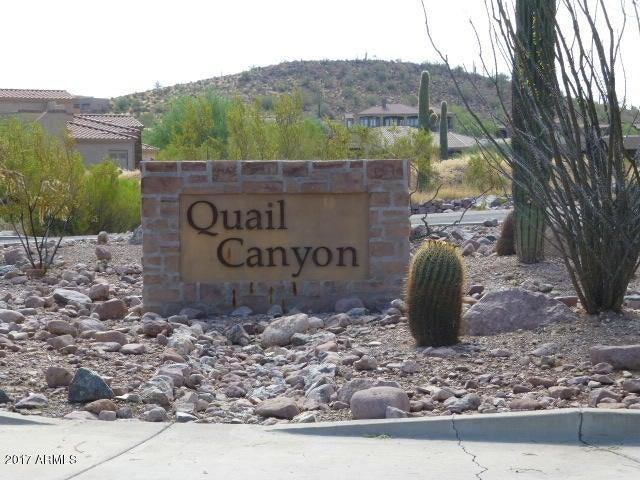 9046 E CANYON CREEK Drive Lot 17, Gold Canyon, AZ 85118