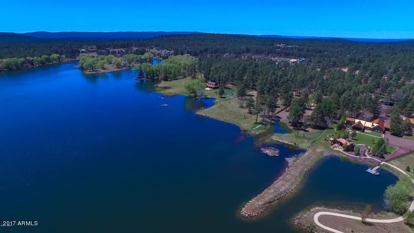 1449 LARSON Road, Lakeside, AZ 85929