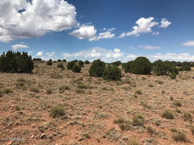 Ranch of The White Mountains Lot 33 -- Lot 32, Concho, AZ 85924