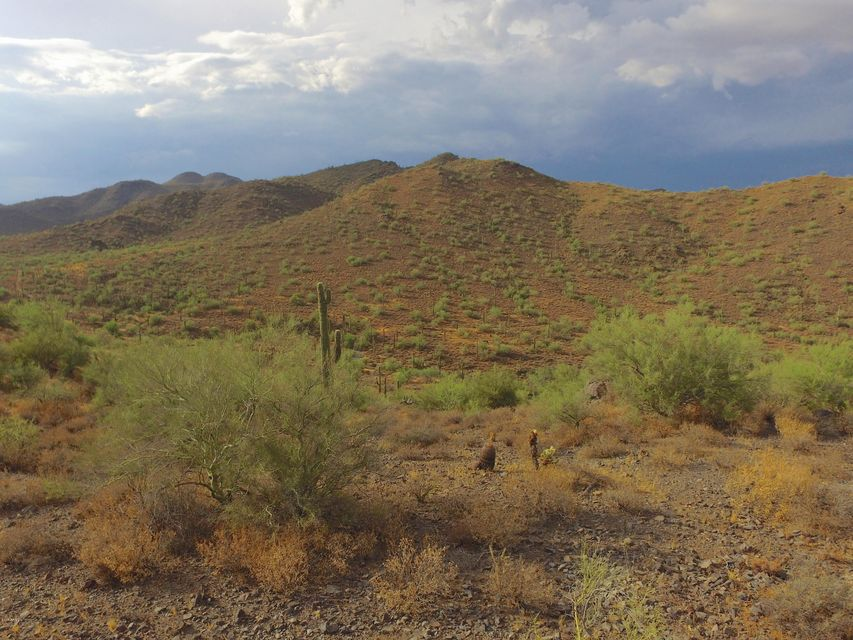 0 E Canyon Creek Road Cave Creek, AZ 85331 - MLS #: 5639447