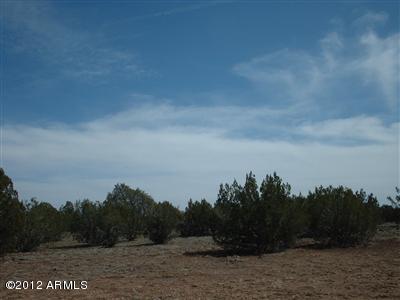 2474 W Presidio Lane, Seligman, AZ 86337