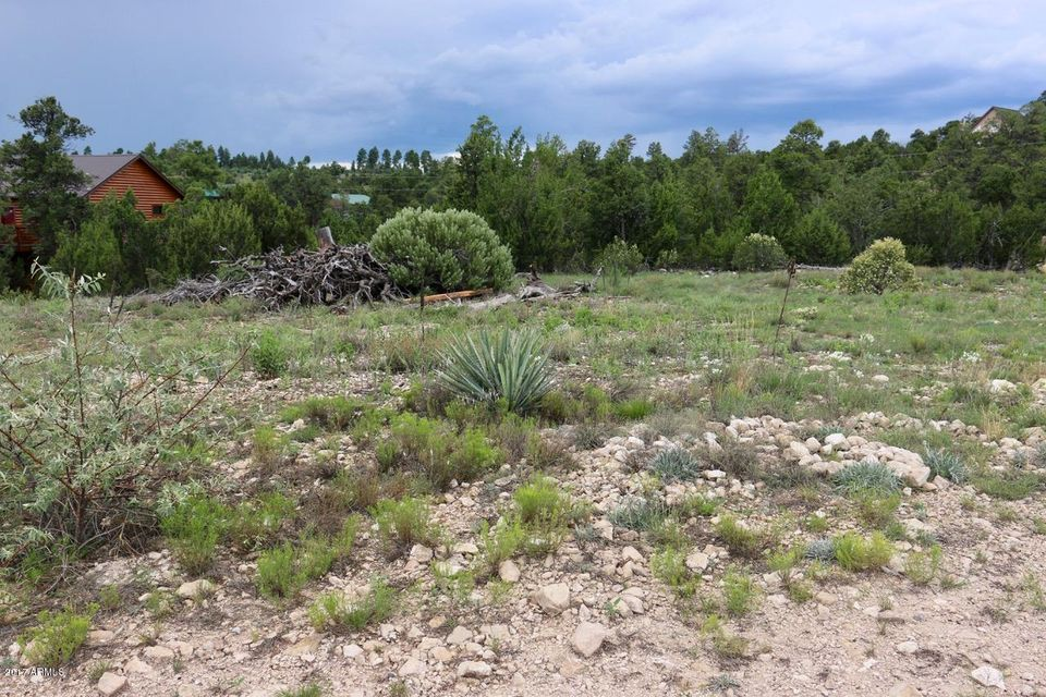 1797 Wild Turkey Lane, Heber, AZ 85928