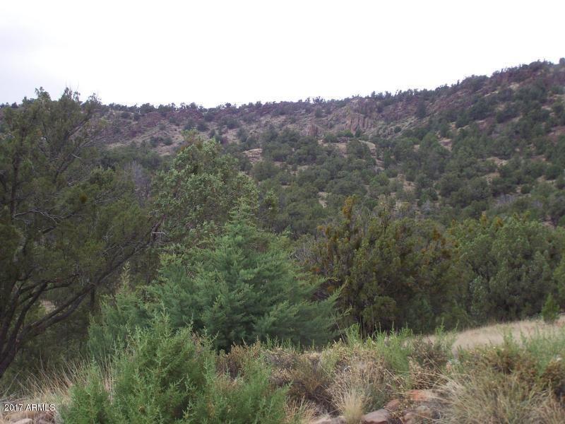 Lot 381 Medicine Man -- Lot 381, Seligman, AZ 86337