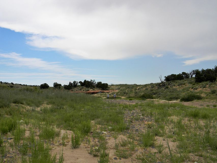 Lot 107 Chevelon Canyon Ranch #1 Overgaard, AZ 85933 - MLS #: 5653368