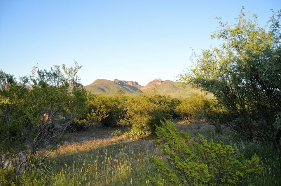 3544 E GREGORY Road Douglas, AZ 85607 - MLS #: 5654394