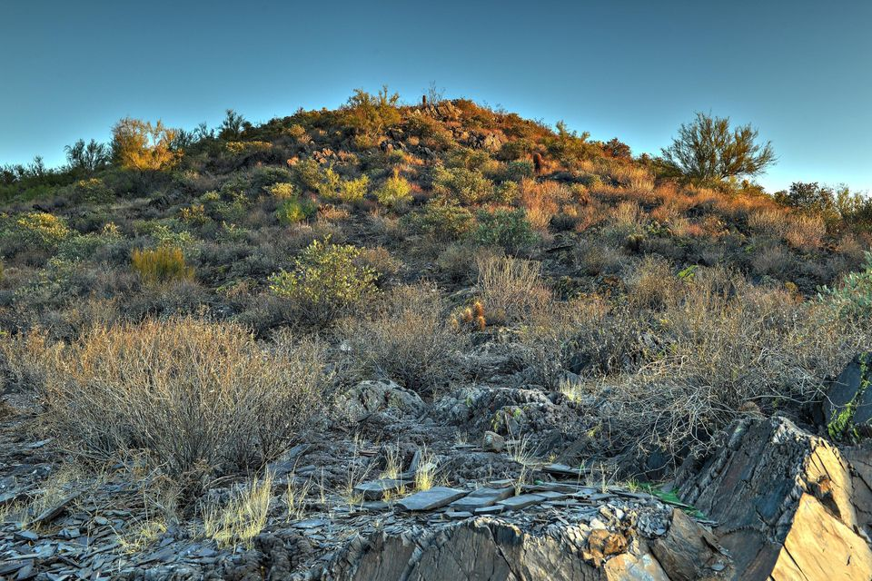 50XX Old Stage Road Cave Creek, AZ 85331 - MLS #: 5667381