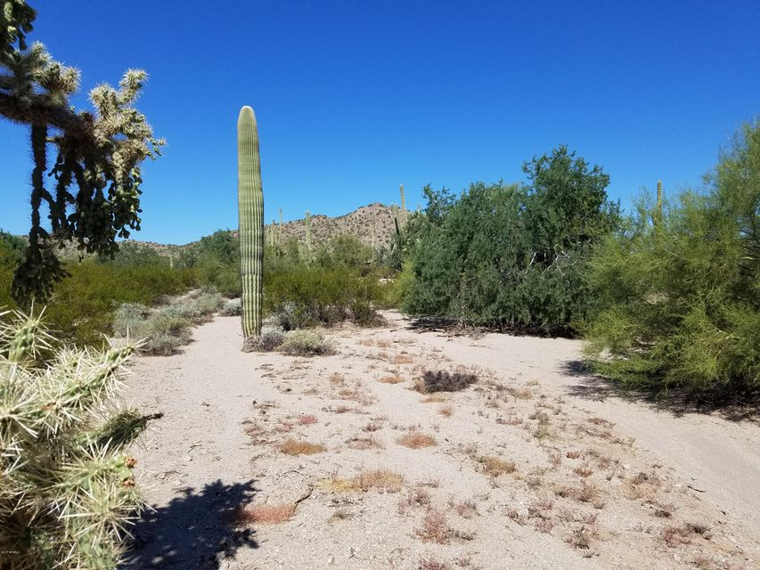 0 W Adobe Dam Road Queen Creek, AZ 85142 - MLS #: 5665257