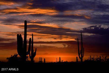 39838 N 98TH Way Scottsdale, AZ 85262 - MLS #: 5673129
