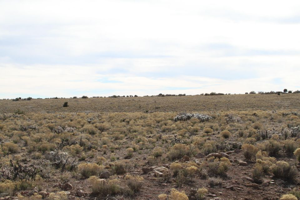 Lot 144 Great Western Road Wikieup, AZ 85360 - MLS #: 5678878