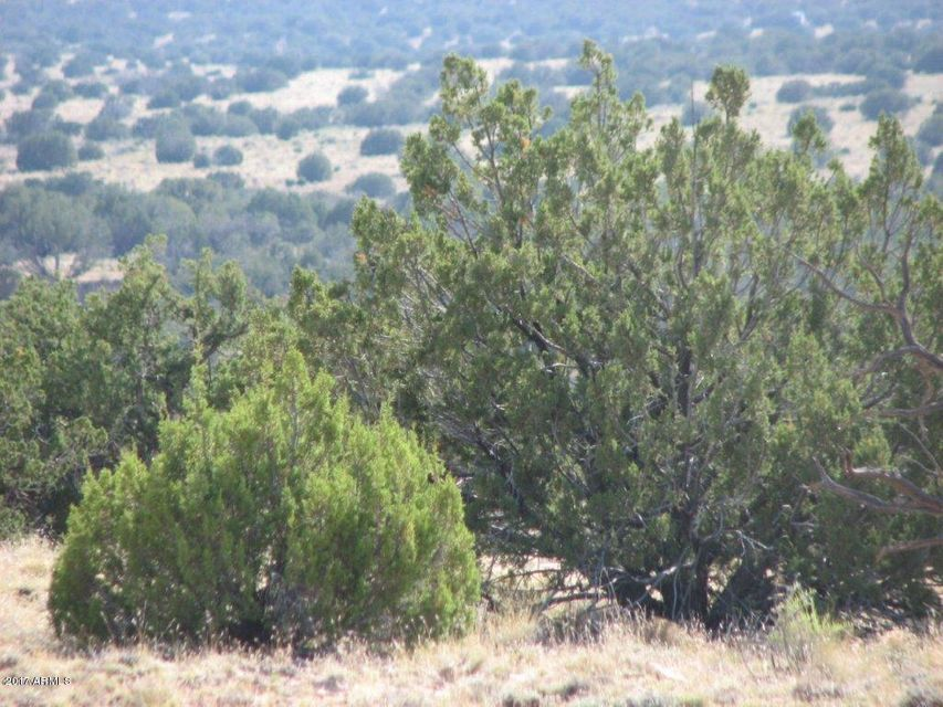 Lot 290 Chevelon Canyon Ranch #3 Overgaard, AZ 85933 - MLS #: 5680457
