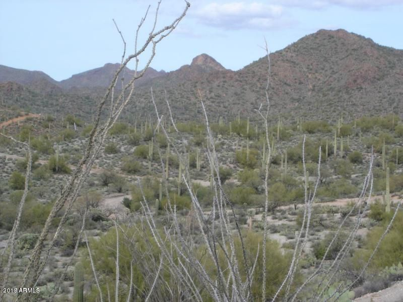 0000 N Elephant Butte Road Queen Valley, AZ 85118 - MLS #: 5705966