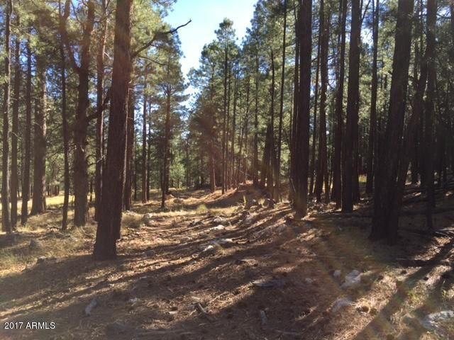 0 FR 56, - Ranch 8 Road Forest Lakes, AZ 85931 - MLS #: 5721418
