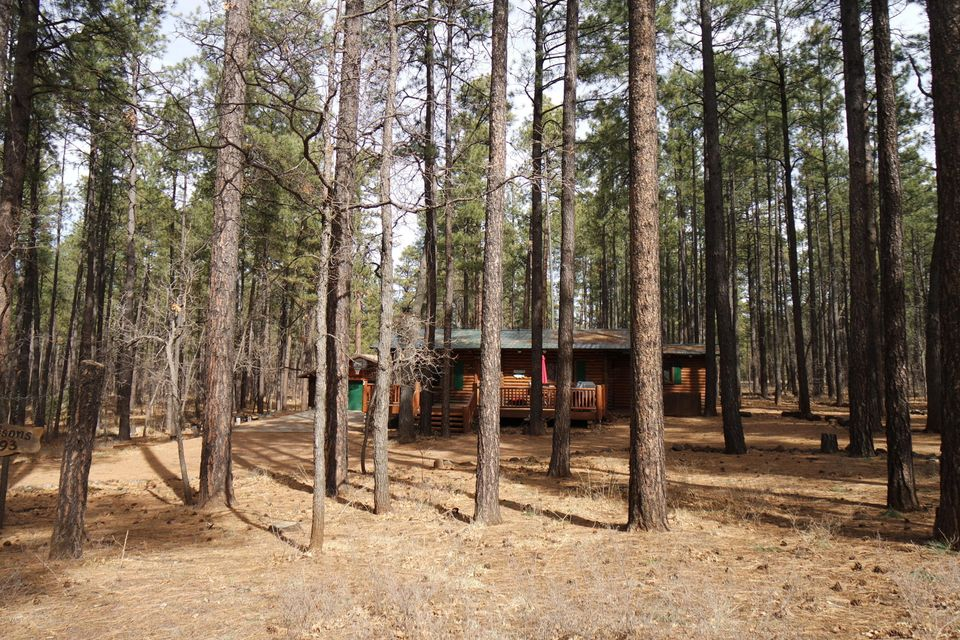 2419 DOUGLAS FIR Drive Pinetop, AZ 85935 - MLS #: 5724055